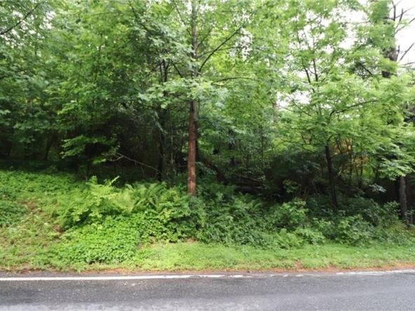 Property at Chestnut Ridge Dr.